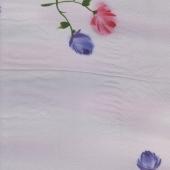 HP-1281 rose